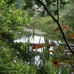 Krumbeckquelle an der neuen Feurwache, am Schulwald